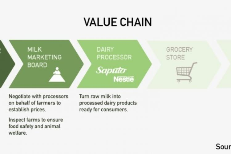 Dairy value chain